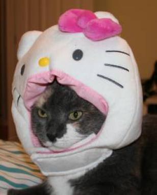 Hello Kitty cat head