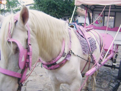 pink horse drawn carriage with Hello Kitty