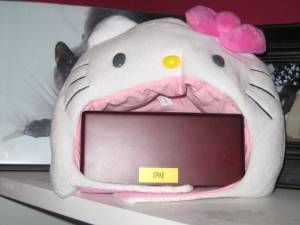 Hello Kitty cat hood of death