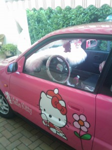 hello-kitty-car-honda
