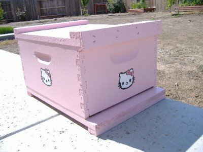 Hello Kitty bee hive